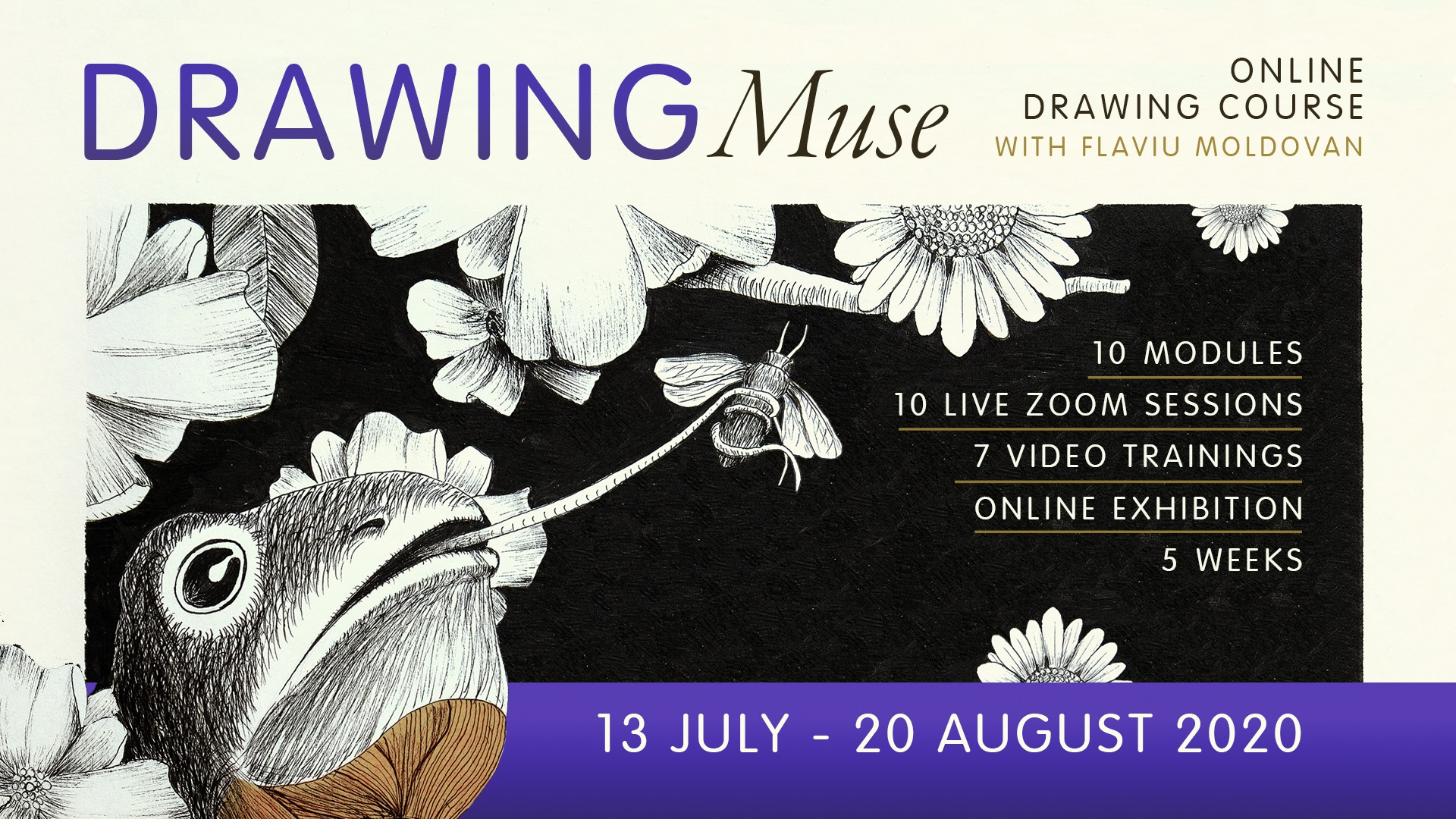 Drawing Muse 2 – Online Drawing Course